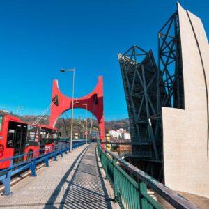 Campamentos de verano en inglés con salida desde Bilbao, ¿cuáles hay?